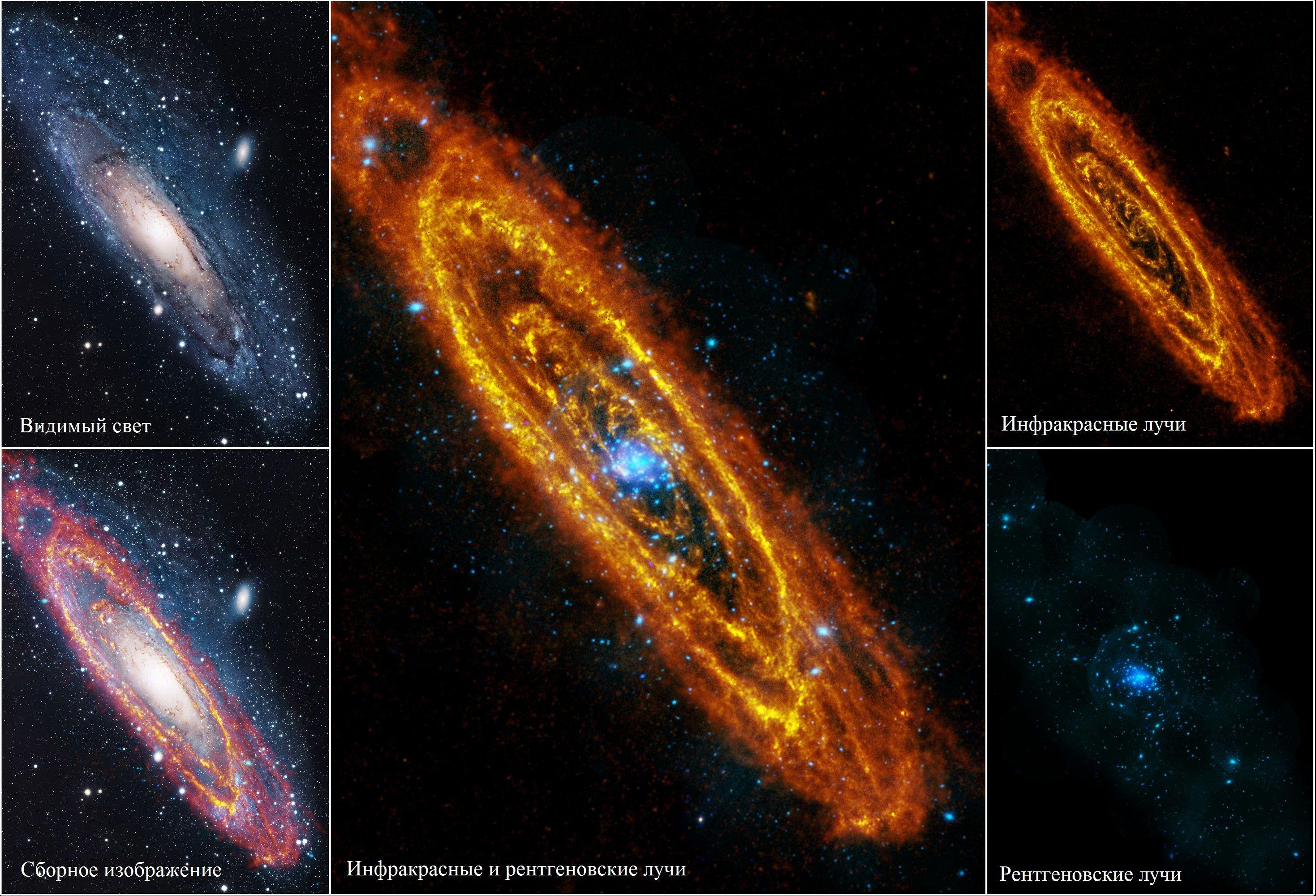 Галактика Андромеды в различных диапазонах электромагнитного спектра